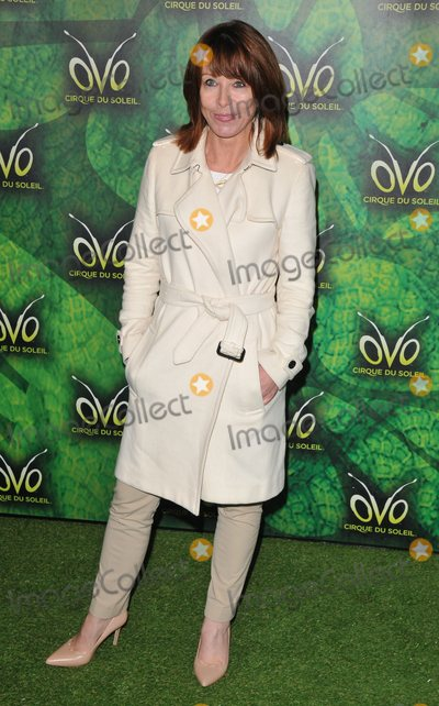 Cirque du Soleil Photo - London UK  100118Kay Burley at the OVO by Cirque du Soleil press night Royal Albert Hall Kensington Gore10 January 2018Ref LMK315-MB1099-120118Can NguyenLandmark MediaWWWLMKMEDIACOM