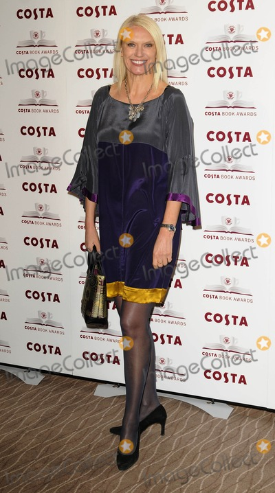Anneka Rice Photo - London UK Anneka Rice at the Costa Book Awards 2008 held at the Intercontinental Hotel in London 27th January 2009Can NguyenLandmark Media