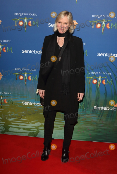 Hermione Norris Photo - London UK  Hermione Norris at Totem by Cirque du Soleil Press Night at the Royal Albert Hall Kensington Gore London on January 16th 2019Ref LMK73-J4210-170119Keith MayhewLandmark MediaWWWLMKMEDIACOM