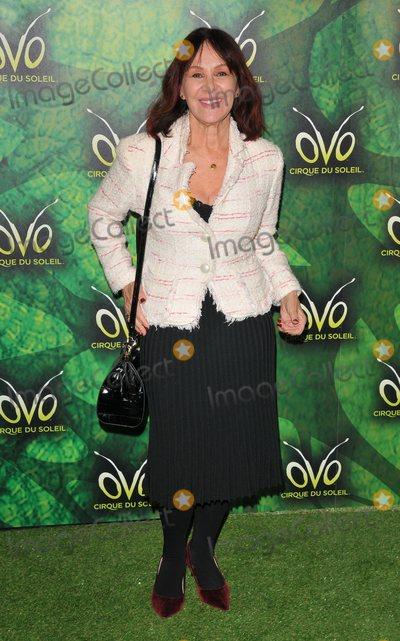 Arlene Phillips Photo - London UK  100118Arlene Phillips  at the OVO by Cirque du Soleil press night Royal Albert Hall Kensington Gore10 January 2018Ref LMK315-MB1099-120118Can NguyenLandmark MediaWWWLMKMEDIACOM
