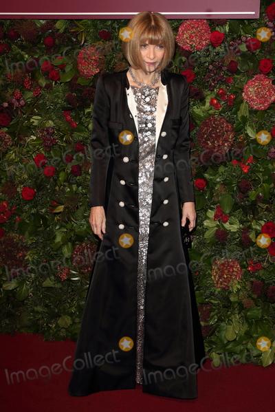 Anna Wintour Photo - London UK Anna Wintour  at the 65th Evening Standard Theatre Awards London Coliseum London England on the 24th  November 2019Ref LMK73-S2621-251119Keith MayhewLandmark MediaWWWLMKMEDIACOM