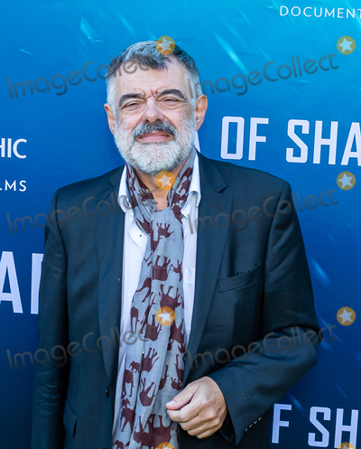 The National Photo - LOS ANGELES CA - JULY 10  Producer Walter Kohler attends the National Geographic Sea of Shadows Movie Premiere on July 10 2019 in Los Angeles California  (Photo by Corine SolbergImageCollectcom)