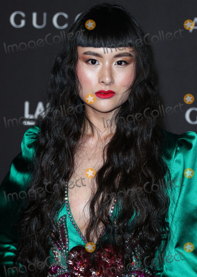 Asia Chow Photo - LOS ANGELES CA USA - NOVEMBER 03 Asia Chow at the 2018 LACMA Art  Film Gala held at the Los Angeles County Museum of Art on November 3 2018 in Los Angeles California United States (Photo by Xavier CollinImage Press Agency)
