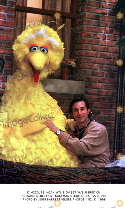 Big Bird Photo - Big Bird