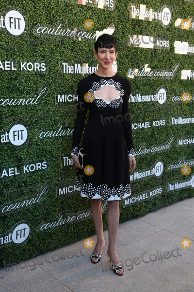 Amy Fine Collins Photo - The 2013 Couture Council Awards Honoring Michael Kors David H Koch Theater Lincoln Center NYC September 4 2013 Photos by Sonia Moskowitz Globe Photos Inc 2013 Amy Fine Collins