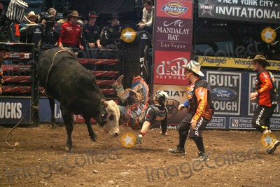 Photos and pictures professional bull riding at madison square garden new york city 01 09 for Bull riding madison square garden