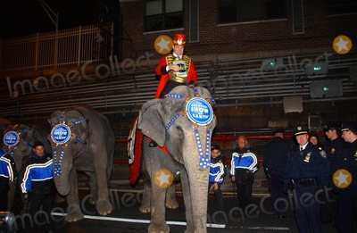 Chuck Wagner Photo - Ringling Brothers and Barnum  Bailey Circus Present  Over the Top  Elephants Walk Through Queens - Midtown Tunnel to Madison Square Garden  New York City 03-18-2008 Photo by Ken Babolcsay-ipol-Globe Photos Inc Chuck Wagner with the Elephants
