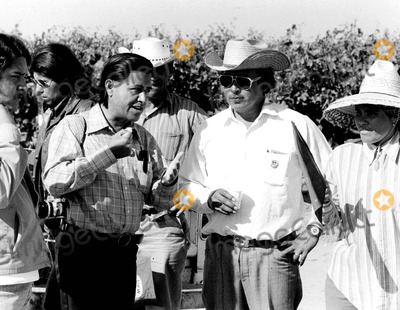Cesar Chavez Photo - Cesar Chavez Vs Teamsters in Coachella Valley CA 4261973 Ted LauGlobe Photos Inc