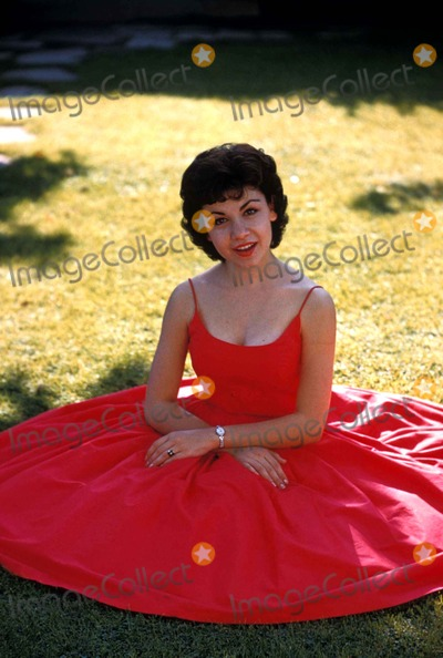 Annette Funicello Photo - Annette Funicello Photo by Don OrnitzGlobe Photos