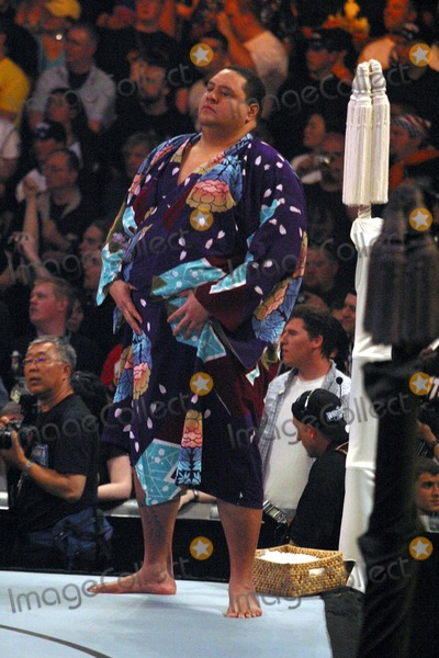 Akebono Photo - Wrestlemania 21 at the Staples Center Los Angeles CA 04-02-05 Photo by Milan RybaGlobe Photosinc2005 Akebono