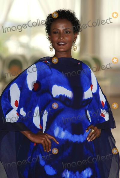 Waris Dirie Photo - Waris Dirie Model Desert Flower Photocall 66th Venice Film Festival in Venice Italy 09-05-2009 Photo by Graham Whitby Boot-allstar-Globe Photos Inc