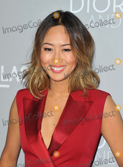 Ami Sung Photo - Ami Sung attending the Los Angeles Premiere of  Dior and I Held at the Lacma Leo Bing Theater in Los Angeles California on April 15 2015 Photo by D Long- Globe Photos Inc