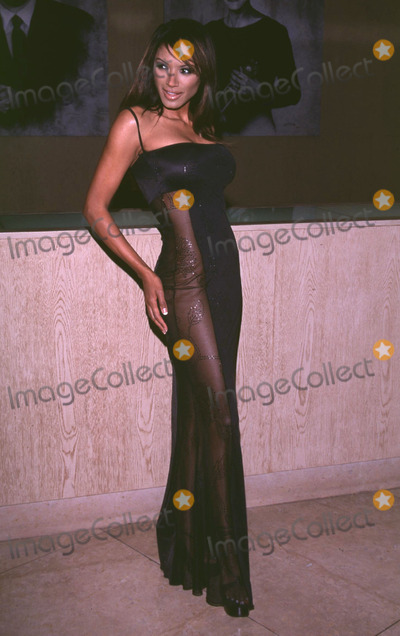 Traci Bingham Photo -  an Evening with the Stars Beverly Hilton Hotel Beverly Hills CA 11172001 Traci Bingham Photo by to RodriguezGlobe Photosinc