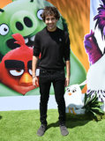 Photo - Sonys The Angry Birds Movie 2 Los Angeles Premiere