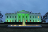 Photos From The White House is illuminated in green light in celebration of Saint Patrick's Day