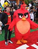 Angry Bird Photo 2