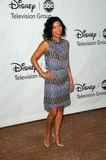 ANNE SON Photo - Anne Sonat the Disney ABC Television Group Summer 2010 Press Tour Beverly Hilton Hotel Beverly Hills CA 08-01-10
