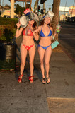 Photos From Alicia Arden and Erika Jordan wear bikinis on Sunset Bl. to remind people to take this election season seriously