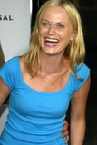 Amy Poehler Photo 2