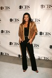 Photo - CBS Paramount UPN Showtime and King Worlds 2006 TCA Party