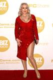 Photo - 2020 XBIZ Awards