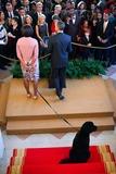 Michelle Obama Photo 2