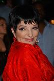 Idlewild Photo - Liza Minnelli attends the premiere of Idlewild