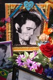 Elvis Presley Photo 2