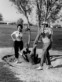 Ava Gardner Photo 2