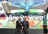 Angry Birds Photo 2