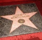 Elizabeth Montgomery Photo 2